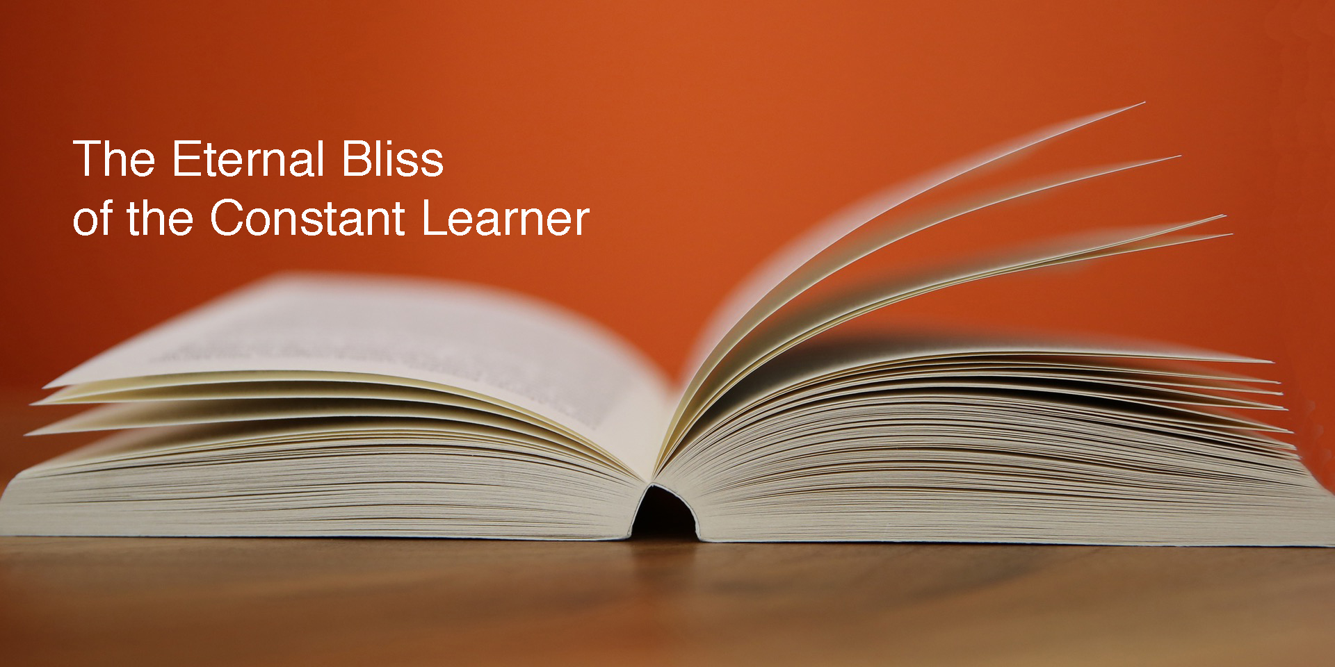 The Constant Learner